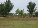 2011_falunap_23
