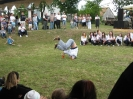 2011_falunap_44