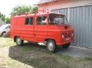 2011_falunap_53