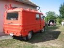 2011_falunap_54